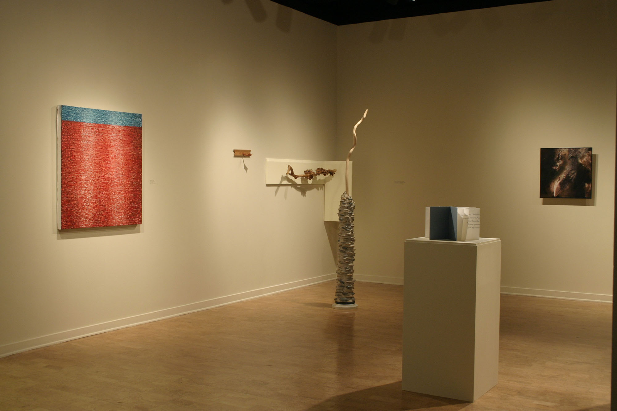 Installation view at the DePaul University Art Gallery