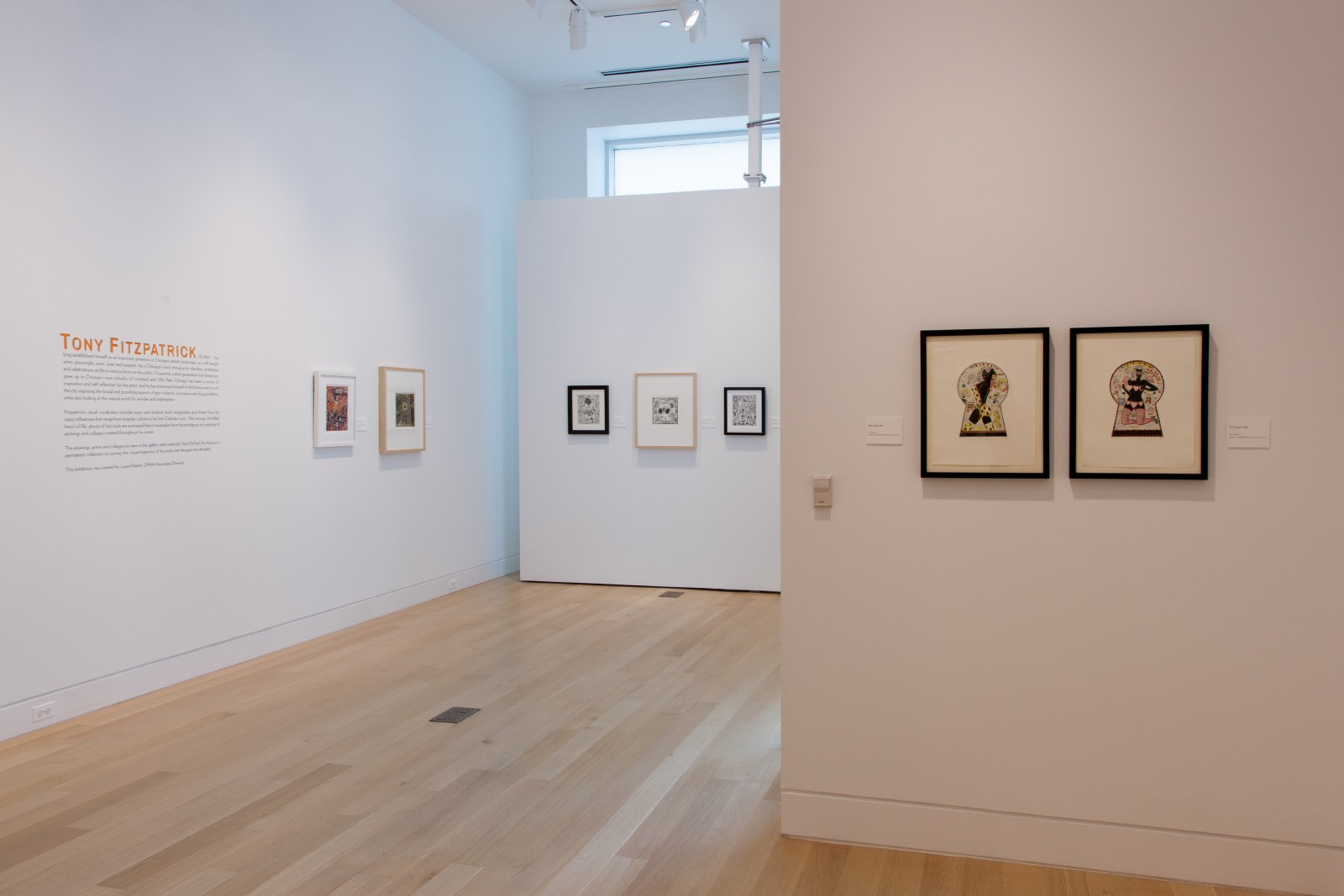 "Tony Fitzpatrick, Installation view of ""The Secret Birds."""