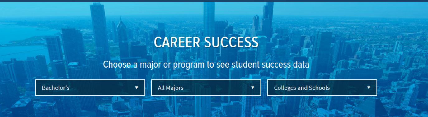 Career Success page image