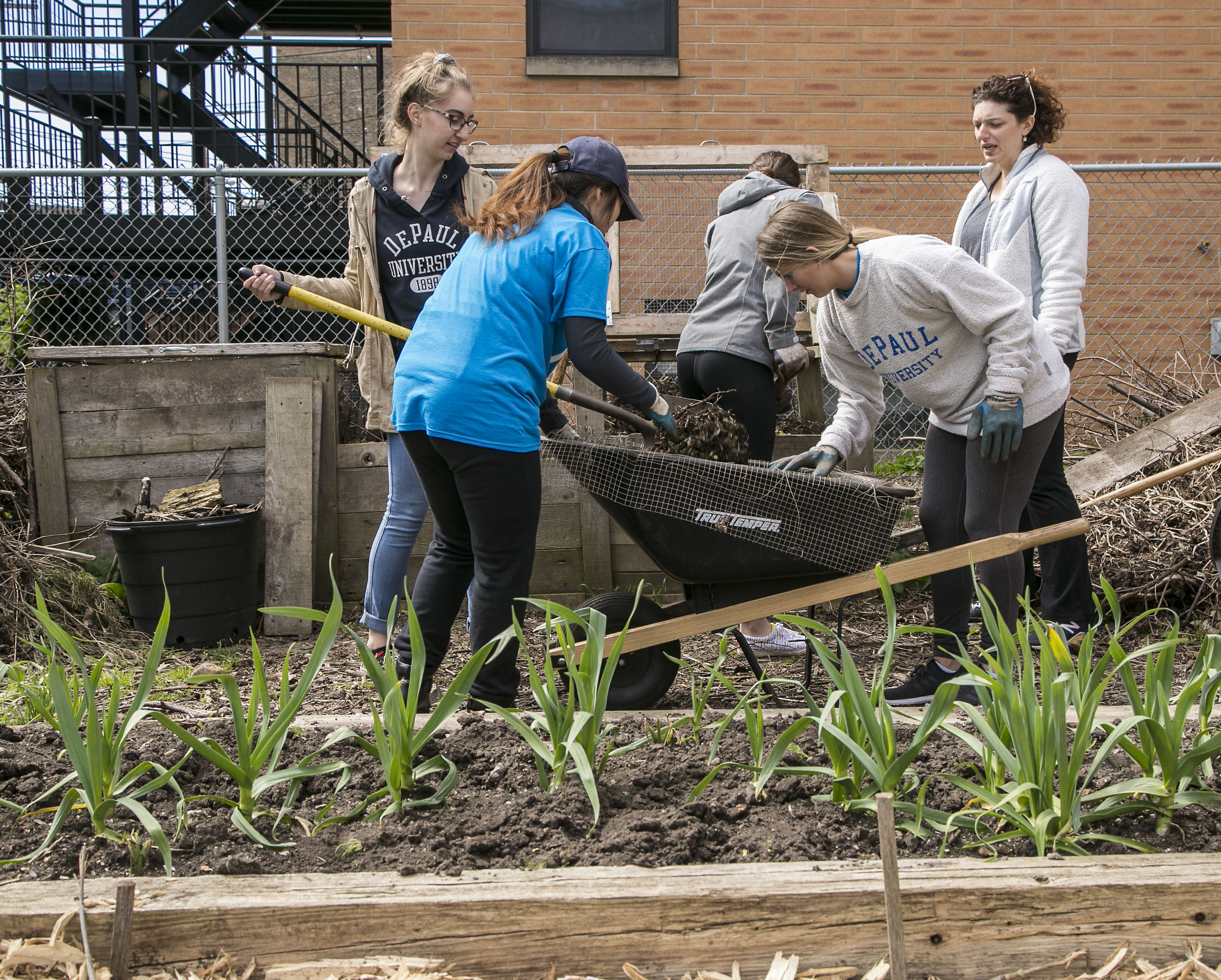 DePaul students participating in Vincentian Service Day