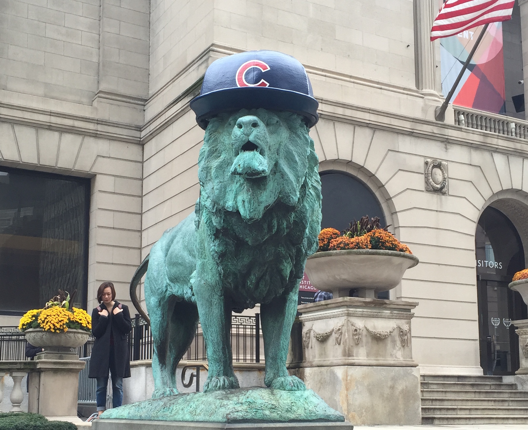 For the first time, the lions outside of the Art Institute of Chicago are adorned with Cubs hats, as the team competes in the 2016 World Series.