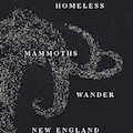 ​'Seven Homeless Mammoths Wander New England' explores evolution of relationships
